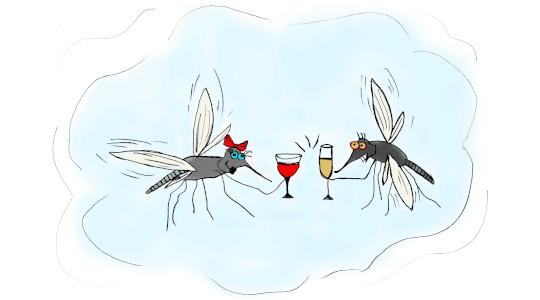 Mosquito allergy