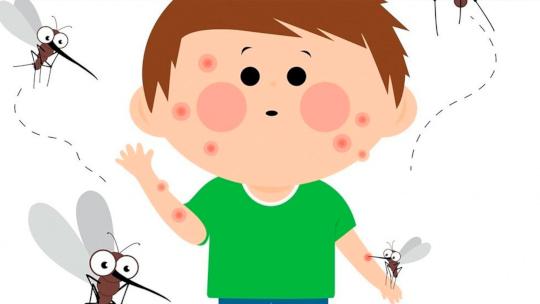 Diagnosing mosquito allergies